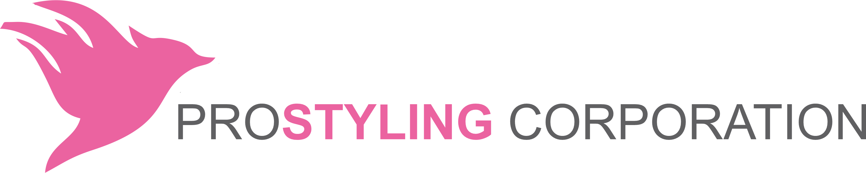 Pro Styling Corporation